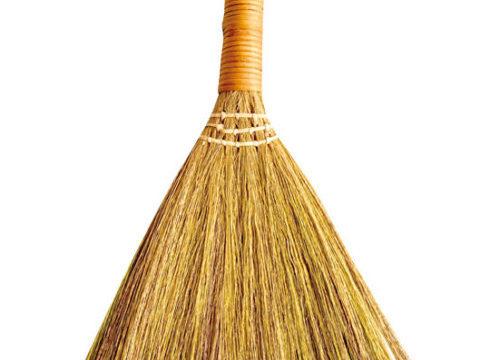 Seria Broom